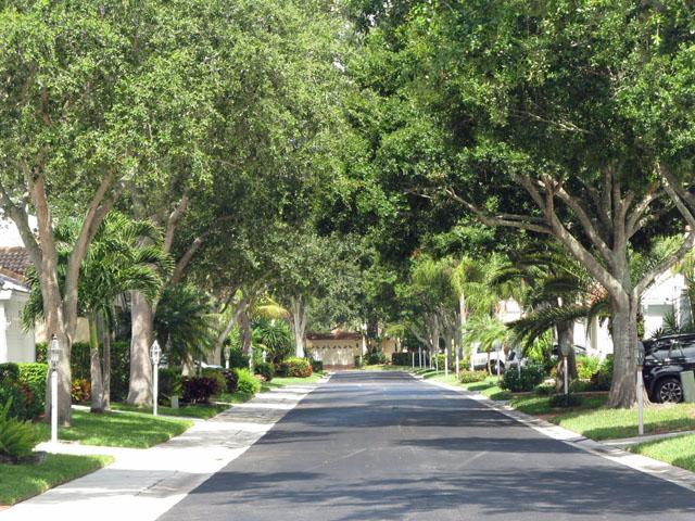 Plum Street